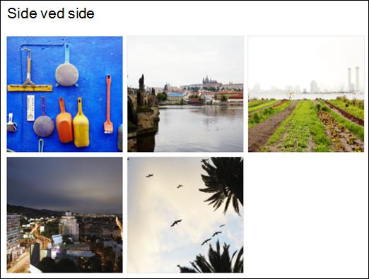Bildegalleri webdel side ved side-visning