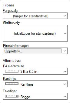 Skjerm bilde av Tilpass-og alternativer-valgene i Publisher.