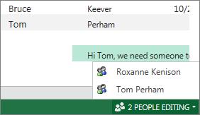 Flere forfattere i Excel Online