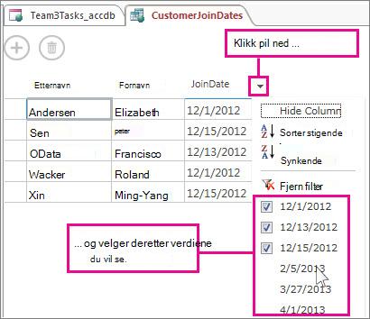 Filtrering av en kolonne i en spørring i en Access-app