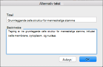 Alternativ tekst-dialogboks for Mac Sierra.