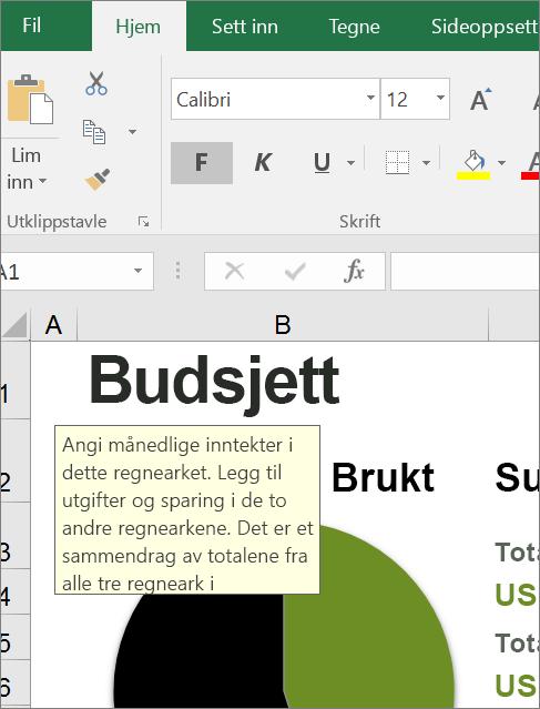 Skjermbilde av Excel-brukergrensesnitt som viser innebygde instruksjoner
