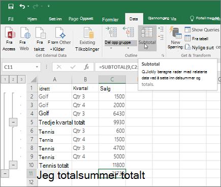 Klikk delsum i data-fanen for å legge til en delsum-rad i Excel-dataene