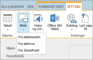 Skjermbilde av SharePoint Online-båndet. Velg deretter Sett inn-fanen, og velg Bilde for å velge om du vil laste opp en fil fra datamaskinen, en nettadresse eller en SharePoint-plassering.
