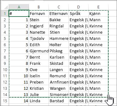 Excel-regneark med uthevet område