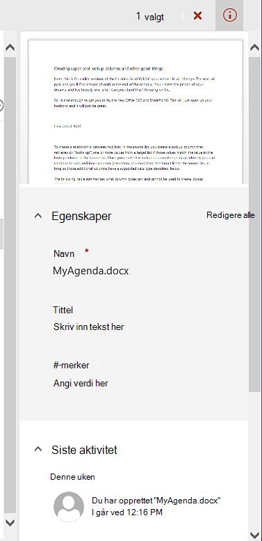 Detaljruten for en enkelt fil valgt.
