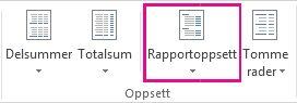 Rapportoppsett-knappen på Utforming-fanen