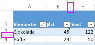 doble linjer mellom rader og kolonner angir skjulte rader eller kolonner