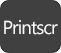 Print Screen-knappen