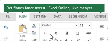 Fanene Hjem, Sett inn, Data og Visning i Excel Online
