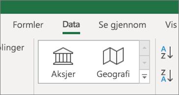 Data-fanen som viser data typene aksjer og geografi