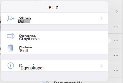 Gi nytt navn til filen ved å trykke knappen 3 prikker og velge Gi nytt navn