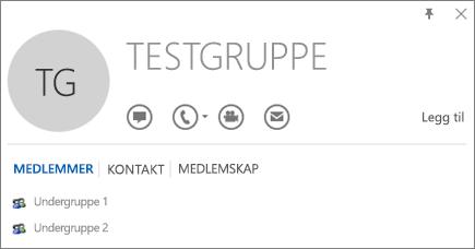 Skjermbilde av Medlemmer-fanen i Outlook-kontaktkortet for gruppen Testgruppe. Undergruppe 1 og Undergruppe 2 vises som medlemmer.