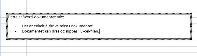 Dette innebygde objektet er et Word-dokument.