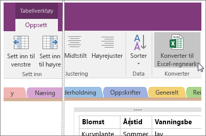 Skjermbilde av knappen Konverter til Excel-regneark i OneNote 2016.