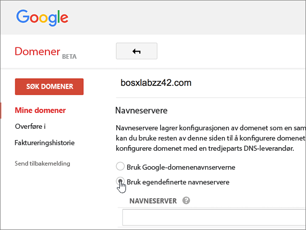 Google-Domains-BP-Redelegate-1-1