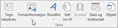 Firmainformasjon for Publisher
