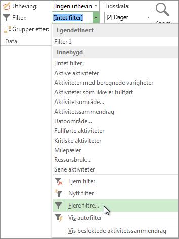 Project-båndet viser hvordan du oppretter et egendefinert filter.