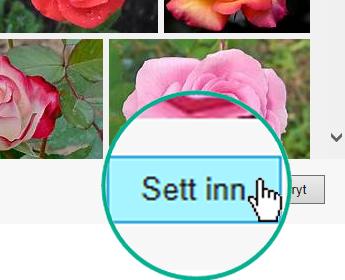 Velg Sett inn-knappen nederst til høyre i dialogboksen