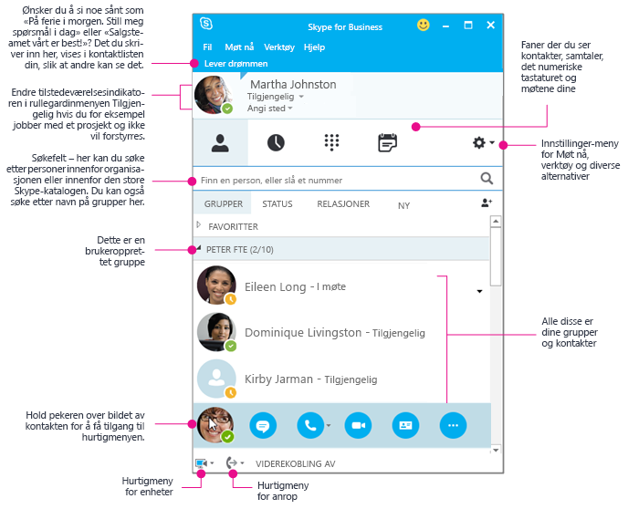 Kontakter-vinduet i Skype for Business, i diagramvisning