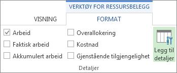 Kategorien Format for verktøy for aktivitetsbelegg, knappen Legg til detaljer