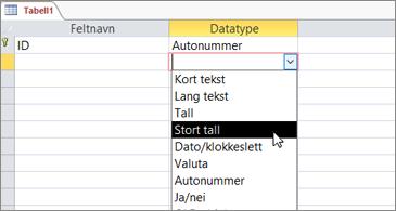 Datatypeliste med Stort tall uthevet