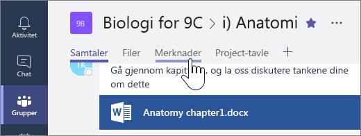 Velg Notater for å åpne Klassenotatblokken, fra en hvilken som helst kanal bortsett fra generelt.