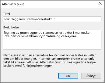 Skjermbilde av dialogboksen Alternativ tekst i OneNote med eksempeltekst i feltene Tittel og Beskrivelse.