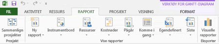 Rapport-fanen i Project 2013