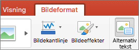 Alternativ tekst-knappen på båndet i PowerPoint for Mac