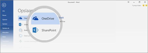 OneDrive- en SharePoint-locaties voor het opslaan van het document zijn gemarkeerd