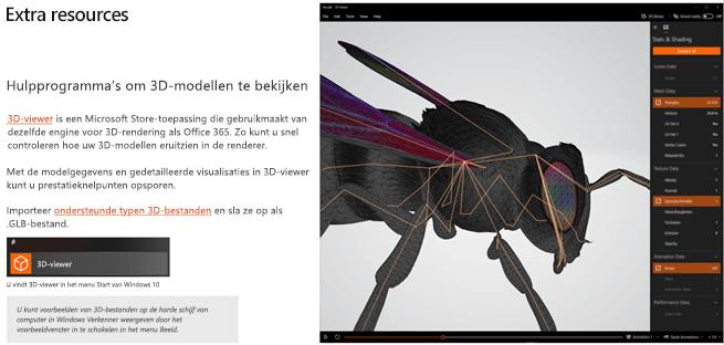 Schermafbeelding van het gedeelte Aanvullende informatie van de richtlijnen van 3D-inhoud
