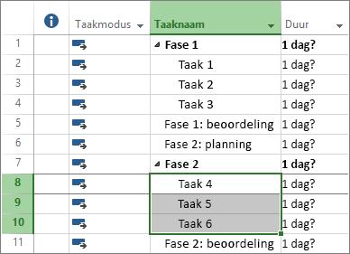 Schermafbeelding van een overzicht van taken in een projectplan.