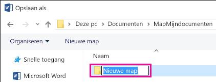 Wijzig de naam van de nieuwe map.