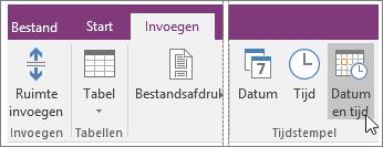 Schermafbeelding van de knop Datum en tijd in OneNote 2016.