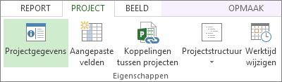 Afbeelding van de knop Projectgegevens.