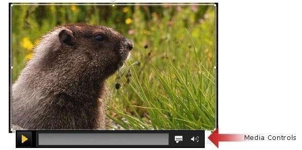 De balk met mediabesturingselementen voor het afspelen van video's in PowerPoint