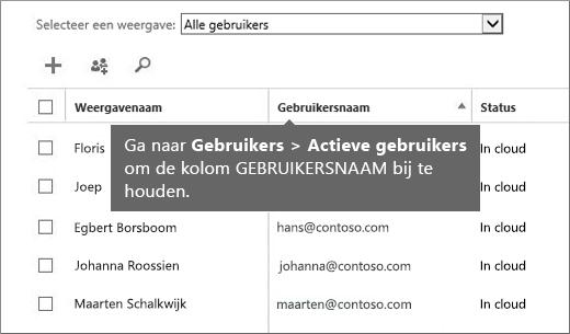 Kolom Gebruikersnaam in het Office 365-beheercentrum
