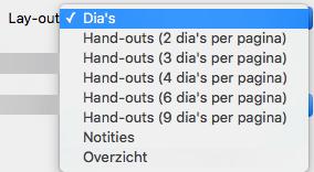 Indeling Dia's selecteren in het dialoogvenster Afdrukken