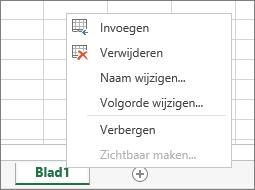 In de schermafbeelding ziet u het menu dat wordt weergegeven nadat u met de rechtermuisknop op een bladtab hebt geklikt. U kunt een werkblad invoegen, verwijderen, de naam wijzigen, de werkbladen opnieuw ordenen en het werkblad verbergen of zichtbaar maken.