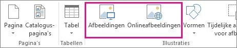 Schermafbeelding van de opties voor het invoegen van afbeeldingen in het menu Invoegen in Publisher.