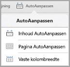 Opties voor AutoAanpassen op de iPad