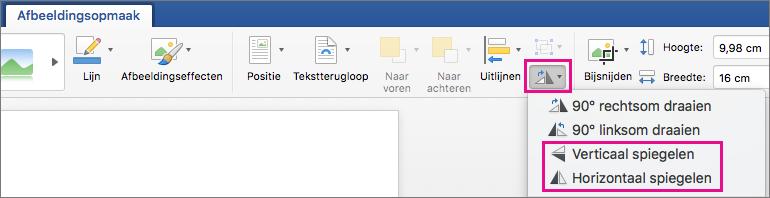 Op het tabblad Afbeeldingsopmaak is Objecten draaien gemarkeerd.