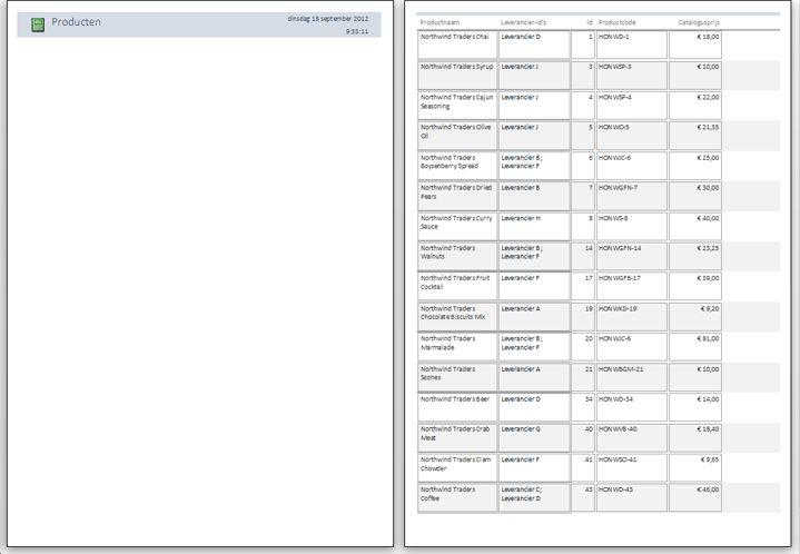 voorbeeld van rapportpagina's met een toegepast pagina-einde
