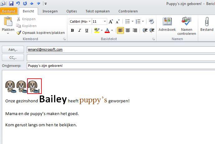 Twee versies van dezelfde e-mailhandtekening: een in een bericht in HTML-indeling en een in een bericht in de indeling Tekst zonder opmaak