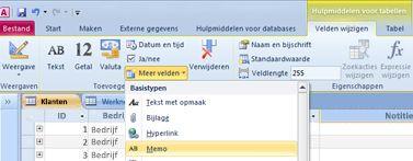 Zoek het gegevenstype Memoveld onder meer velden