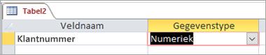 Eerste veldnaam en gegevenstype van een nieuwe Access-tabel