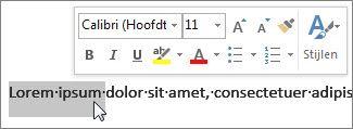 Miniwerkbalk met geselecteerde tekst