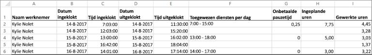 Klok voorbeeldgegevens voor een werknemer