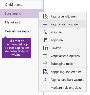 Schermafbeelding van een pagina waarvan de naam wordt gewijzigd in OneNote